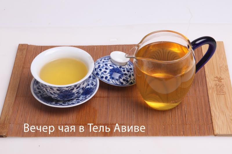 IMG_0455_VT-02