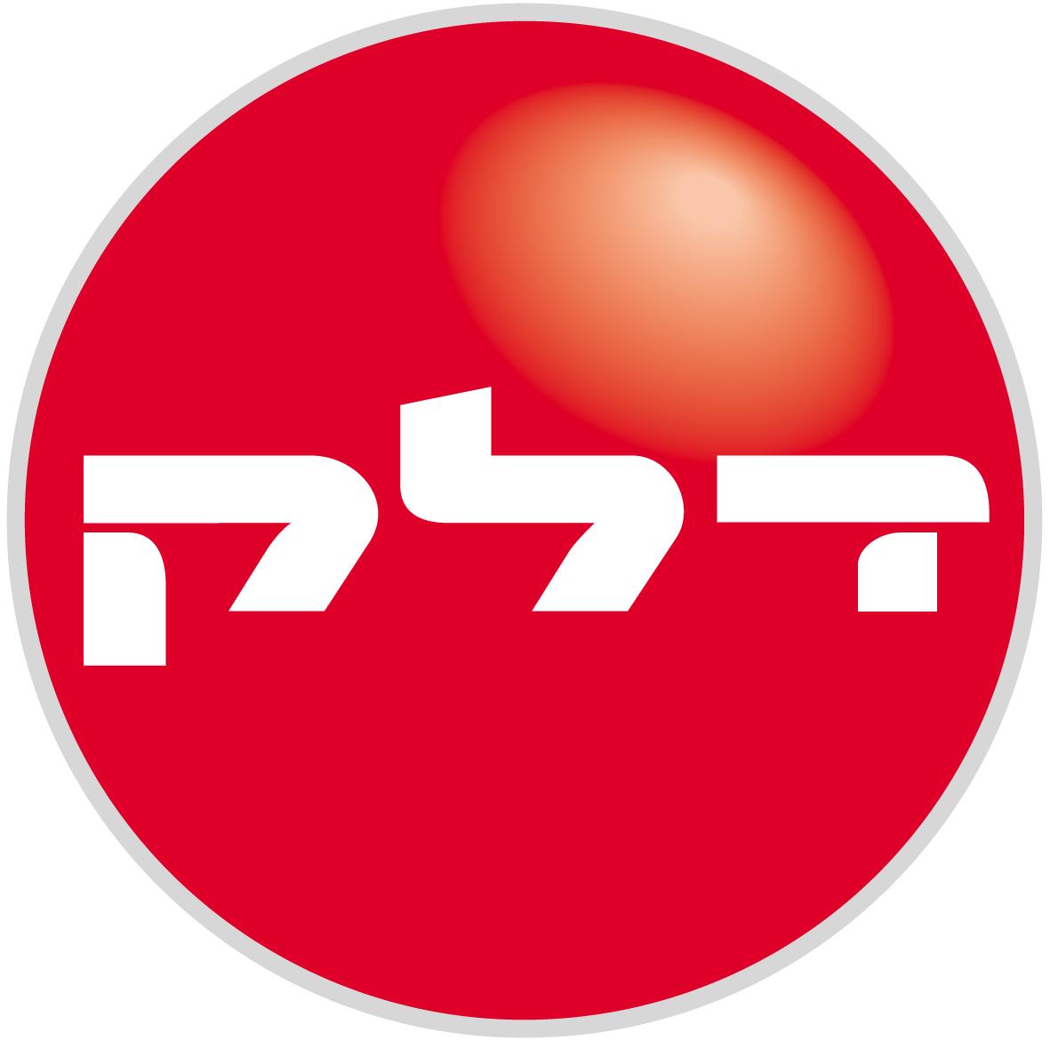 Logo delek